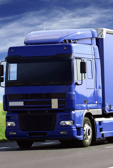 MM Global logistics LLC | A new logistics brand in Dubai | Logistics
